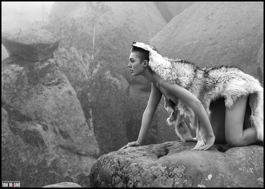 карпаты-аня-волк