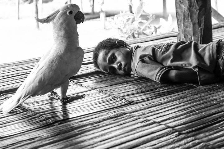 «Фотография в экзотических путешествиях» — творческая встреча с фотографом Дмитрием Любарским 23 июня в 19:00